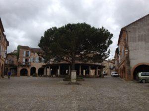 Auvillar, Markplatz mit steinerner Rotunde und hölzerner Kiefer (oder muss man hier schon Pinie sagen?)